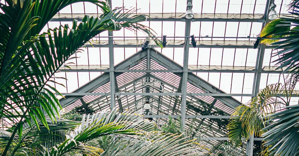 växthuseffekten industrialiseringen